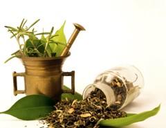 Új honlap a növényi gyógyszerekről